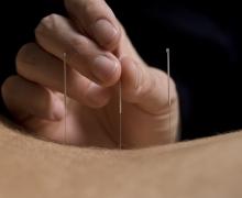 Needles pic